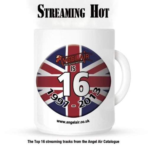 VARIOUS ARTISTS - Streaming Hot