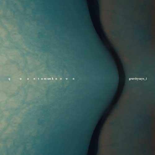 GRAVITYSAYS_I - Quantum Unknown