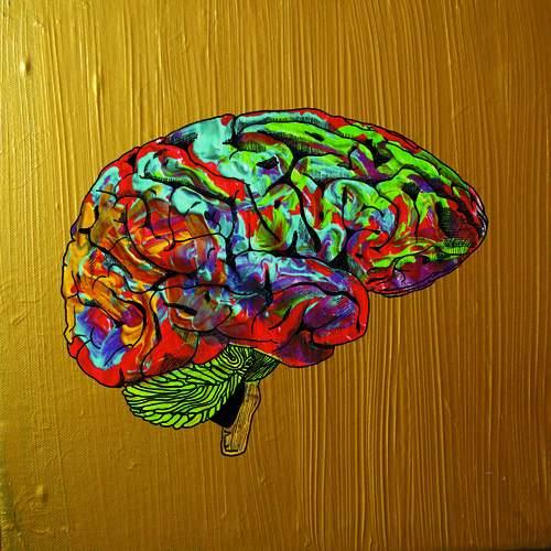 LAPIS LAZULI - Brain