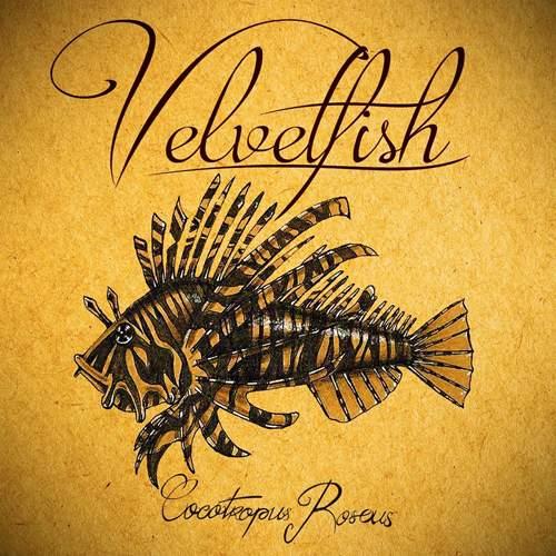 VELVETFISH - Cocotropus Roseus